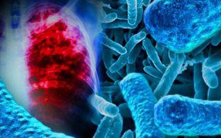 Анализы на туберкулез